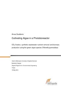 Cultivating Algae in a Photobioreactor : CO2 fixation